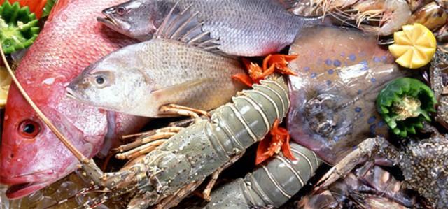 seafood_HJRX
